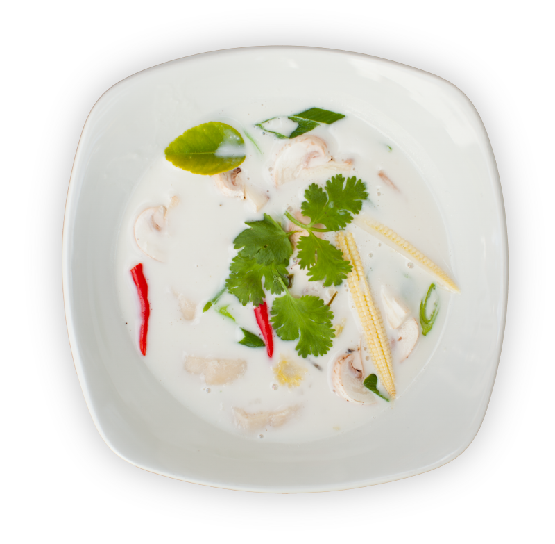 Traditionelle asiatische Tom Kha Gai-Suppe
